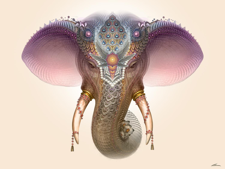 Eloh Projects Royal Elephant